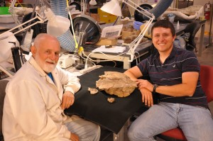 Fossil preparator Jerry Golden and doctoral student Joshua Lively display the 76-million-year-old turtle fossil Arvinachelys goldeni.