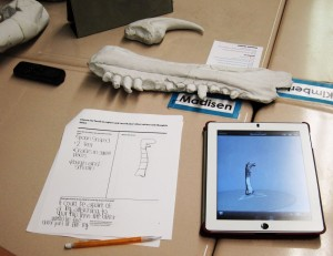 A completed Research Quest activity worksheet next to a virtual 3-D model of a dinosaur bone from the Natural Museum of Utah's fossil collections.