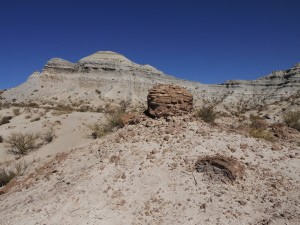 The rocks of the Chañares Formation contain a wealth of fossils from the Triassic Period, which are often preserved in large concretions (foreground).