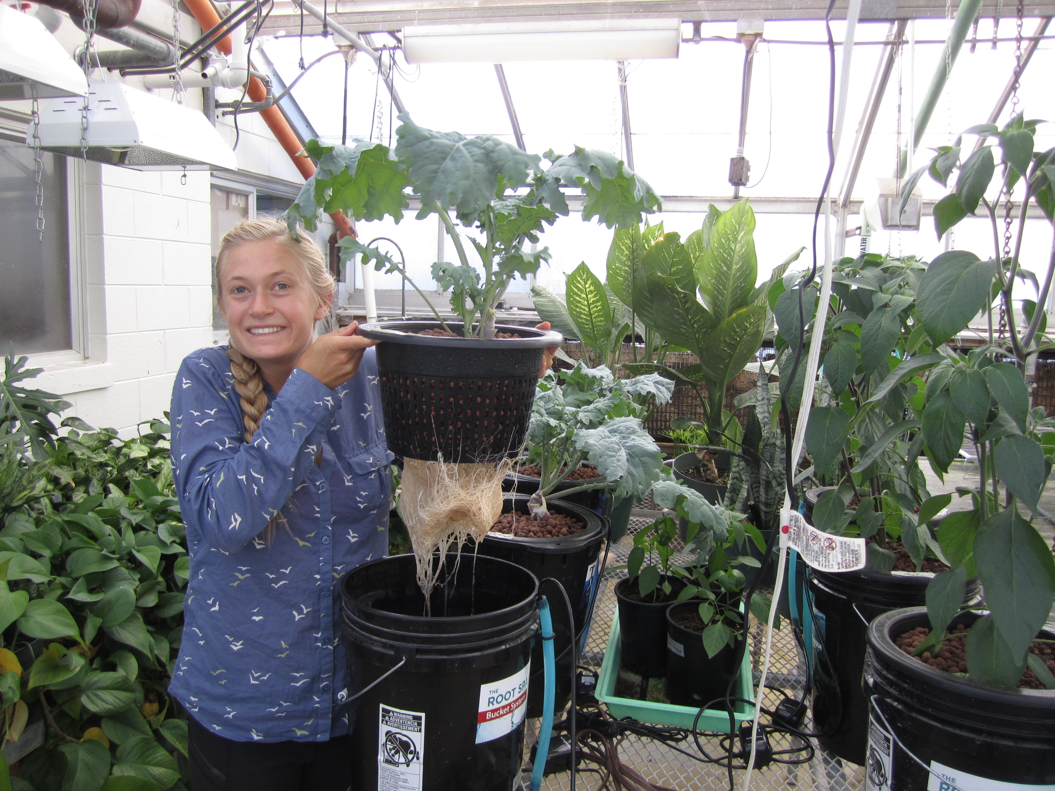 U student Georgie Corkery with plants growing using hydroponics. She is holding a kale plant.