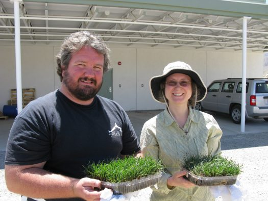 Litvak and Scot Parker, a graduate student at the University of California, Irvine, at the Steele/Burnand Anza-Borrego Desert Research Center.